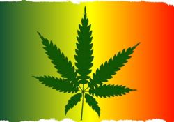 Légalisation du cannabis