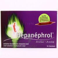 HEPANEPHROL, solution buvable en ampoule à CHÂLONS-EN-CHAMPAGNE