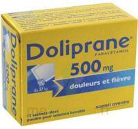 DOLIPRANE 500 mg Poudre pour solution buvable en sachet-dose B/12 à CHÂLONS-EN-CHAMPAGNE