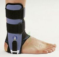 LIGASTRAP IMMO G2, droit, taille 1