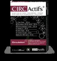 Synactifs Circatifs Gélules B/30 à CHÂLONS-EN-CHAMPAGNE