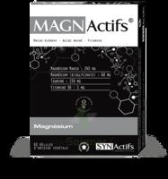 Synactifs Magnactifs Gélules B/60 à CHÂLONS-EN-CHAMPAGNE