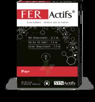 Synactifs Feractifs Gélules B/60 à CHÂLONS-EN-CHAMPAGNE