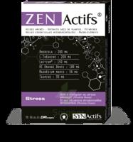 Synactifs Zenactifs Gélules B/30 à CHÂLONS-EN-CHAMPAGNE