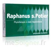 RAPHANUS S.POTIER BIOLOGIQUE, bt 12 à CHÂLONS-EN-CHAMPAGNE