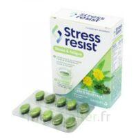 Stress Resist Comprimés Stress & fatigue B/30 à CHÂLONS-EN-CHAMPAGNE