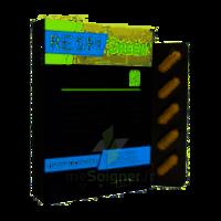 Synactifs Respigreen Bio Gélules B/10 à CHÂLONS-EN-CHAMPAGNE