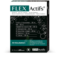 Synactifs Flexactifs Gélules B/120 à CHÂLONS-EN-CHAMPAGNE