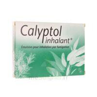 CALYPTOL INHALANT, émulsion pour inhalation par fumigation à CHÂLONS-EN-CHAMPAGNE