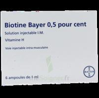 BIOTINE BAYER 0,5 POUR CENT, solution injectable I.M. à CHÂLONS-EN-CHAMPAGNE