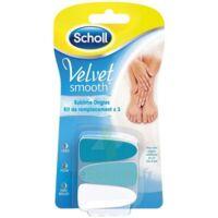 Scholl Velvet Smooth Ongles Sublimes kit de remplacement à CHÂLONS-EN-CHAMPAGNE
