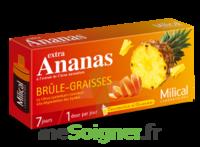 Milical Ananas Bruleur De Graisse à CHÂLONS-EN-CHAMPAGNE