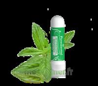 Puressentiel Respiratoire Inhaleur Respiratoire aux 19 Huiles Essentielles - 1 ml à CHÂLONS-EN-CHAMPAGNE