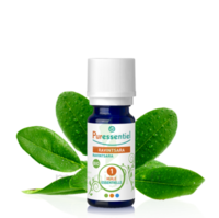 Puressentiel Huiles essentielles - HEBBD Ravintsara BIO* - 5 ml à CHÂLONS-EN-CHAMPAGNE