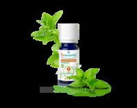 Puressentiel Huiles essentielles - HEBBD Menthe poivrée BIO* - 30 ml à CHÂLONS-EN-CHAMPAGNE