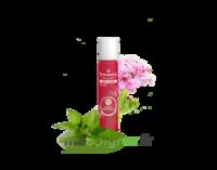 PURESSENTIEL ANTI-PIQUE Roller 11 huiles essentielles à CHÂLONS-EN-CHAMPAGNE