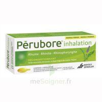 PERUBORE Caps inhalation par vapeur inhalation Plq/15 à CHÂLONS-EN-CHAMPAGNE