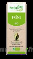 Herbalgem Frêne Macérat bio 30ml à CHÂLONS-EN-CHAMPAGNE