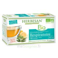 Herbesan Thym bio Tisane respiratoire 20 Sachets à CHÂLONS-EN-CHAMPAGNE