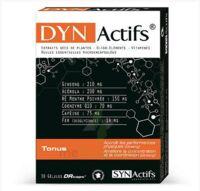 Synactifs Dynactifs Gélules B/30