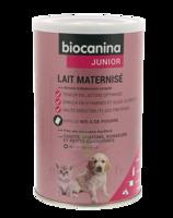 Biocanina Lait poudre maternisé B/400g à CHÂLONS-EN-CHAMPAGNE
