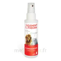 Clément Thékan Caniderma Solution externe cicatrisant Spray/125ml