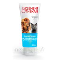 Clément Thékan Shampooing peaux sensibles T/200ml à CHÂLONS-EN-CHAMPAGNE