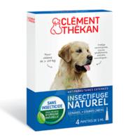 Clément Thékan Spot-on Solution externe grand chien 4 Pipettes/5ml à CHÂLONS-EN-CHAMPAGNE