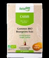 Herbalgem Gomme cassis bio B/24 à CHÂLONS-EN-CHAMPAGNE