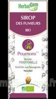 Herbalgem Sirop bio des fumeurs 150ml à CHÂLONS-EN-CHAMPAGNE