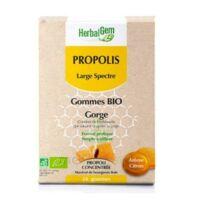 Herbalgem Propolis large spectre Gomme bio B/24 à CHÂLONS-EN-CHAMPAGNE