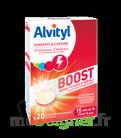 Alvityl Boost Comprimés B/20 à CHÂLONS-EN-CHAMPAGNE