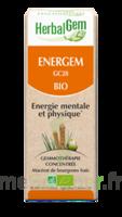 Herbalgem Energem Solution buvable bio Fl cpte-gttes/30ml à CHÂLONS-EN-CHAMPAGNE