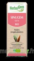 Herbalgem Sinugem Solution buvable bio Spray/15ml à CHÂLONS-EN-CHAMPAGNE