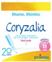 Boiron Coryzalia Solution buvable unidose B/20 à CHÂLONS-EN-CHAMPAGNE