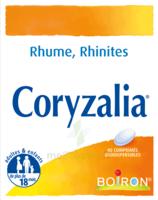 Boiron Coryzalia Comprimés orodispersibles à CHÂLONS-EN-CHAMPAGNE