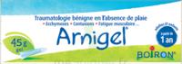 Boiron Arnigel Gel T/45g à CHÂLONS-EN-CHAMPAGNE