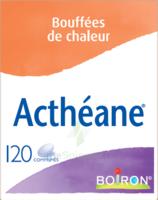 Boiron Acthéane Comprimés B/120 à CHÂLONS-EN-CHAMPAGNE